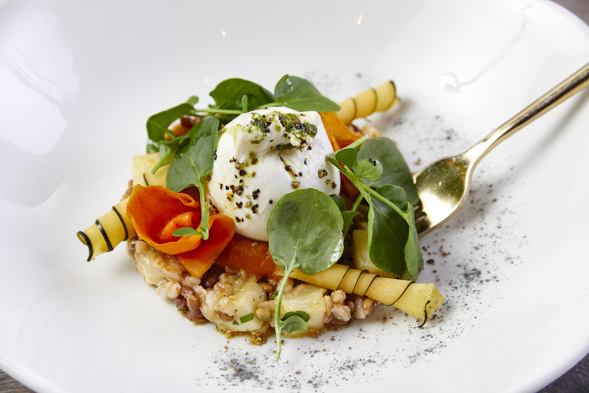 burrata and squash appetizer